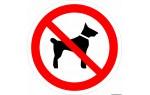 Плёнка Фотолюм. (Р-14) Запрещается вход (проход) с животными  (Распродажа. На складе 5 шт.)